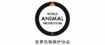 动物保护协会